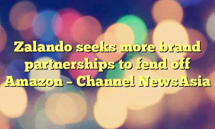 Zalando seeks more brand partnerships to fend off Amazon – Channel NewsAsia