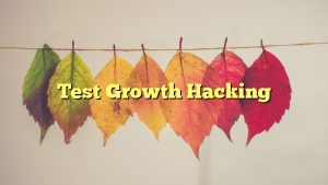 Test Growth Hacking