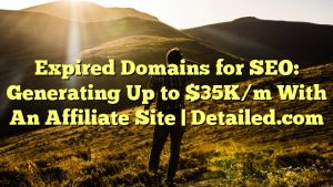 Expired Domains for SEO: Generating Up to $35K/m With An Affiliate Site | Detailed.com