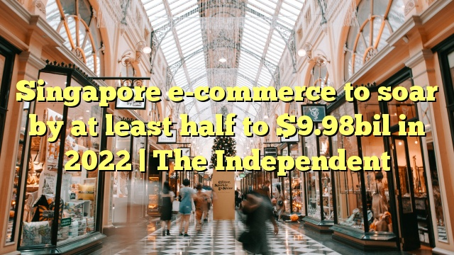 Singapore e-commerce to soar by at least half to $9.98bil in 2022 | The Independent
